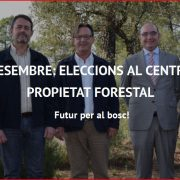 17 de desembre: Eleccions al Centre de la Propietat Forestal (CPF)