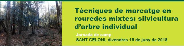 """Jornada de camp """"Tècniques de marcatge en rouredes mixtes: silvicultura d'arbre individual"""""""