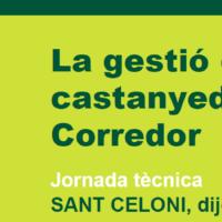Jornada de les castanyedes al Montnegre-Corredor