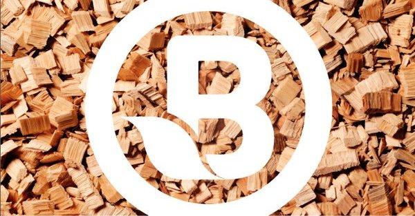 Jornada Professional de Biomassa a Catalunya