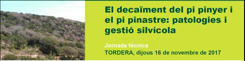 """Jornada tècnica """"El decaïment del pi pinyer i el pi pinastre: Patologies i gestió silvícola"""""""